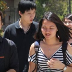 WA's International student numbers at colleges and training institutes plunge